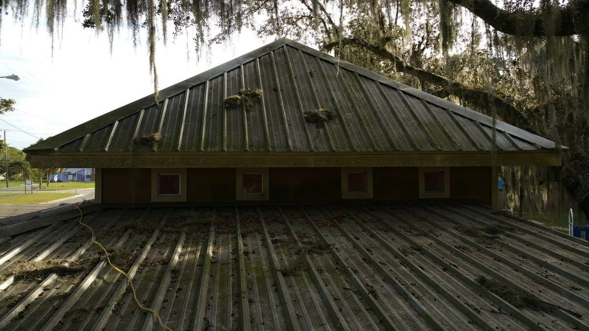 Metal Roof Cleaning Before