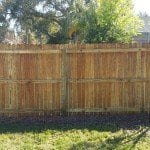 Fence Cleaning After