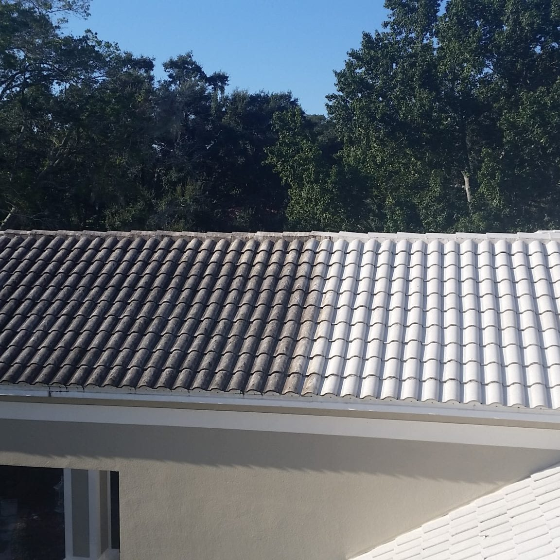 Is Your Roof Under Attack? Roofs in Lakeland and the rest of Florida present the perfect living quarters for algae, moss, and other mold. The worst culprit is a type of bacteria called Gloeocapsa Magma. It creates black streaks across your roofing – and as it eats the limestone in your shingles, it spreads. The result is ugly and dangerous. Without regular cleaning, this bacteria will deteriorate your roofing. Algae growth on the roof can lead to premature granule loss. It makes your roof to appear much older than it is, and it creates issues that cost money and take time to fix. No roofing material is safe from this kind of wear and tear: It affects asphalt roofing, slate, metal, and tile roofs alike. Here's the good news. There is an alternative. A professional roof cleaning will restore the original appearance of your roof and keep it from declining prematurely.